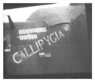 489th - B-24 #42-94920 : Callipygia